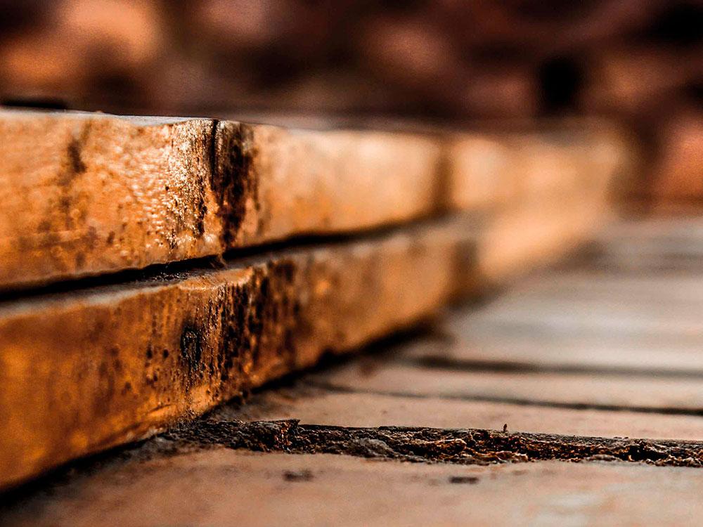 tratamiento en madera
